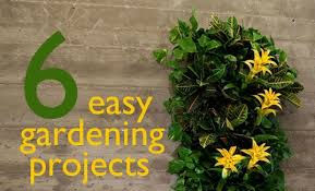 simple garden ideas for the average home decorating clear