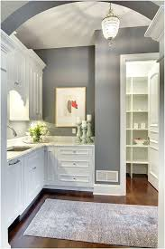 best gray paint for kitchen cabinets grey kitchen walls kitchen wonderful best grey kitchen walls ideas