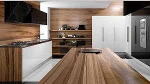 modern wood modern wood kitchen cabinets charming modern 11580 hbrd me