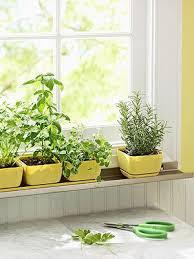 Window Sill Herb Garden Designs 32 Best Traveling Gardens Images On Pinterest Baskets Fresh