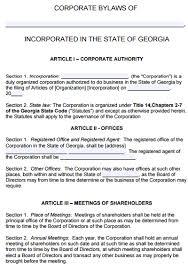 free georgia corporate bylaws template pdf word