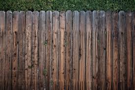 4 ways to dog proof your new backyard