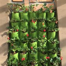vertical wall garden promotion shop for promotional vertical wall