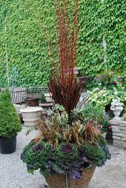 90 best container plantings images on pinterest gardens pots