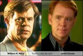 David Caruso Meme - william h macy totally looks like david caruso cheezburger
