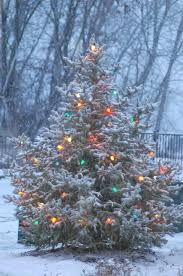 ratliff u0027s christmas tree farm home facebook