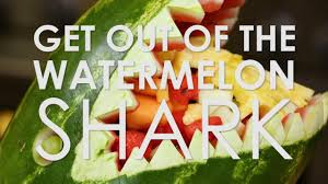 rachael ray thanksgiving get out of the watermelon shark rachael ray show youtube