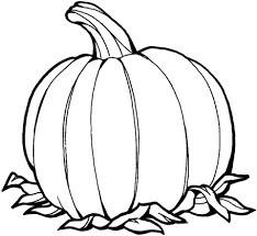 free coloring pages of a pumpkin free coloring pages of pumpkins pumpkin coloring page free printable