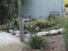 Frog Pond Backyard Boonah Landscaping Gallery Ponds