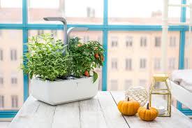 indoor edible garden kit home outdoor decoration