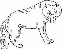 wolf drawing kids easy drawings