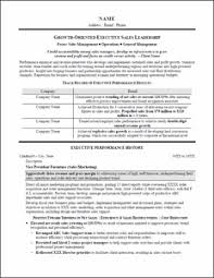 Leadership Examples For Resume by Executive Resume U0026 Professional Resume Samples