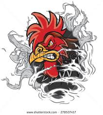 gamecock coloring pages angry rooster stock images royalty free images u0026 vectors