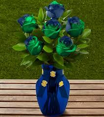 13 s day gifts for die notre dame fans