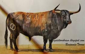 el blog del toro bravo