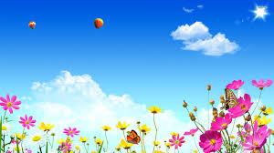 butterflies on flowers 544111 walldevil