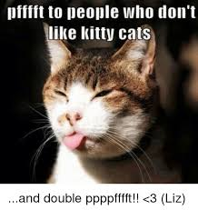 Kitty Cat Memes - pfffft to people who don t like kitty cats and double ppppfffft 3