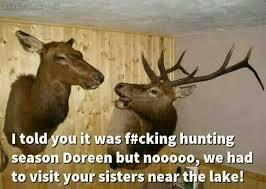 Deer Hunting Memes - 37 best funny deer hunting meme images on pinterest deer hunting