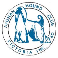 afghan hound breeders victoria ozafghans