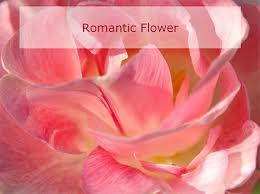 romantic flowers powerpoint template
