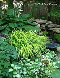 25 unique shade landscaping ideas on pinterest shade garden