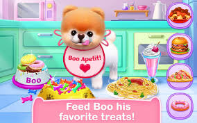boo the world u0027s cutest dog android apps on google play