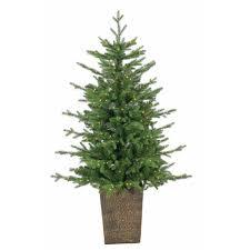 sterling 4 ft pre lit led potted natural cut freeport pine