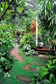 queensland native plants 650 best tropical garden idea u0027s images on pinterest tropical