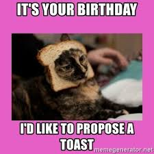 Cat Toast Meme - it s your birthday i d like to propose a toast bread cat meme