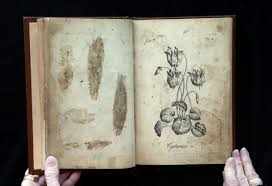 coloring pictures of books forgotten rare coloring book 257 years old found in missouri