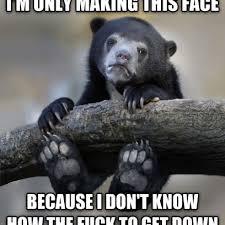 Meme Bear - confession bear meme is actually a very worried bear cub