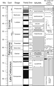 Salmas Revised Timing Of The South American Early Paleogene Land Mammal