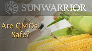 What Are Gmos Genetically Modified Foods And Your Health