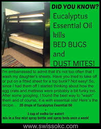 Medicine For Bed Bugs Best 25 Killing Bed Bugs Ideas On Pinterest What Kills Bed Bugs
