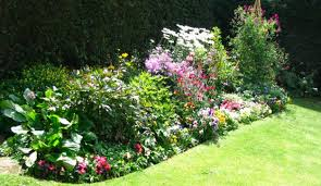 flower garden ideas beginners garden design ideas
