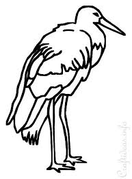 stork coloring book kids
