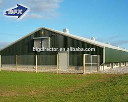 low cost steel poultry shed low cost steel poultry shed suppliers