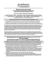 It Executive Resume Examples by Executive Resume U0026 Professional Resume Samples