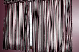 interior indoor potted plant design ideas with vertical blinds