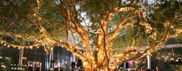 christmas tree wedding archives round decor
