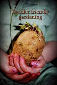 toddler friendly gardening woo jr kids activities