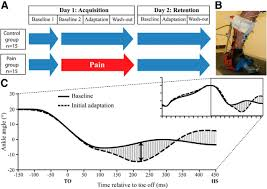 tonic pain experienced during locomotor training impairs retention