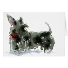 scottish terrier cards invitations greeting photo cards zazzle