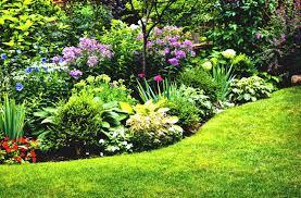 Small Garden Bed Design Ideas by Organic Gardening At Home Gardenabc Com
