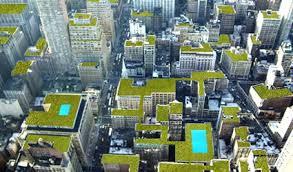come realizzare un giardino pensile immagine giardino pensile come fare creare realizzare giardino