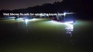 Kayak Night Lights Night Kayaking At Bbc Youtube