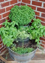 Herb Garden Winter - stacked herb garden would be so cute out on a balcony or