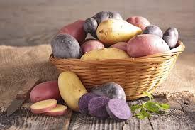 cuisiner la pomme comment cuisiner avec la pomme de terre