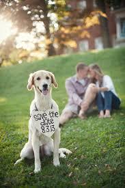 dog wedding invitation cutedog puppylove weddingdog wedding