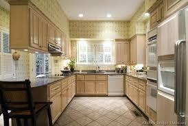 White Washed Cabinets Kitchen Whitewashed Kitchen Cabinet Whitewash Kitchen Cabinets Superb